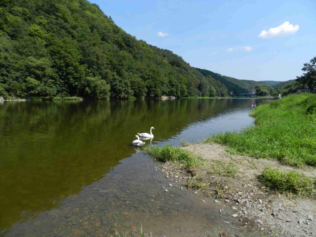Бероунка река в Чехии