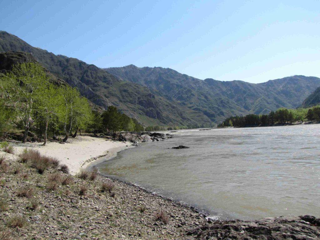 Река Катунь Алтайский край