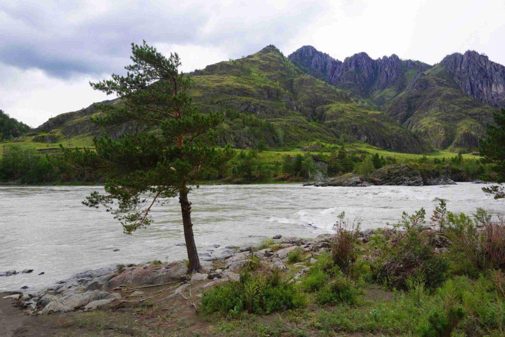 Река Катунь на карте