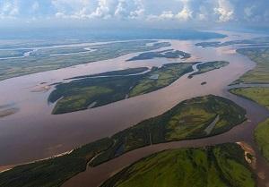 где река Амур впадает в Тихий Океан