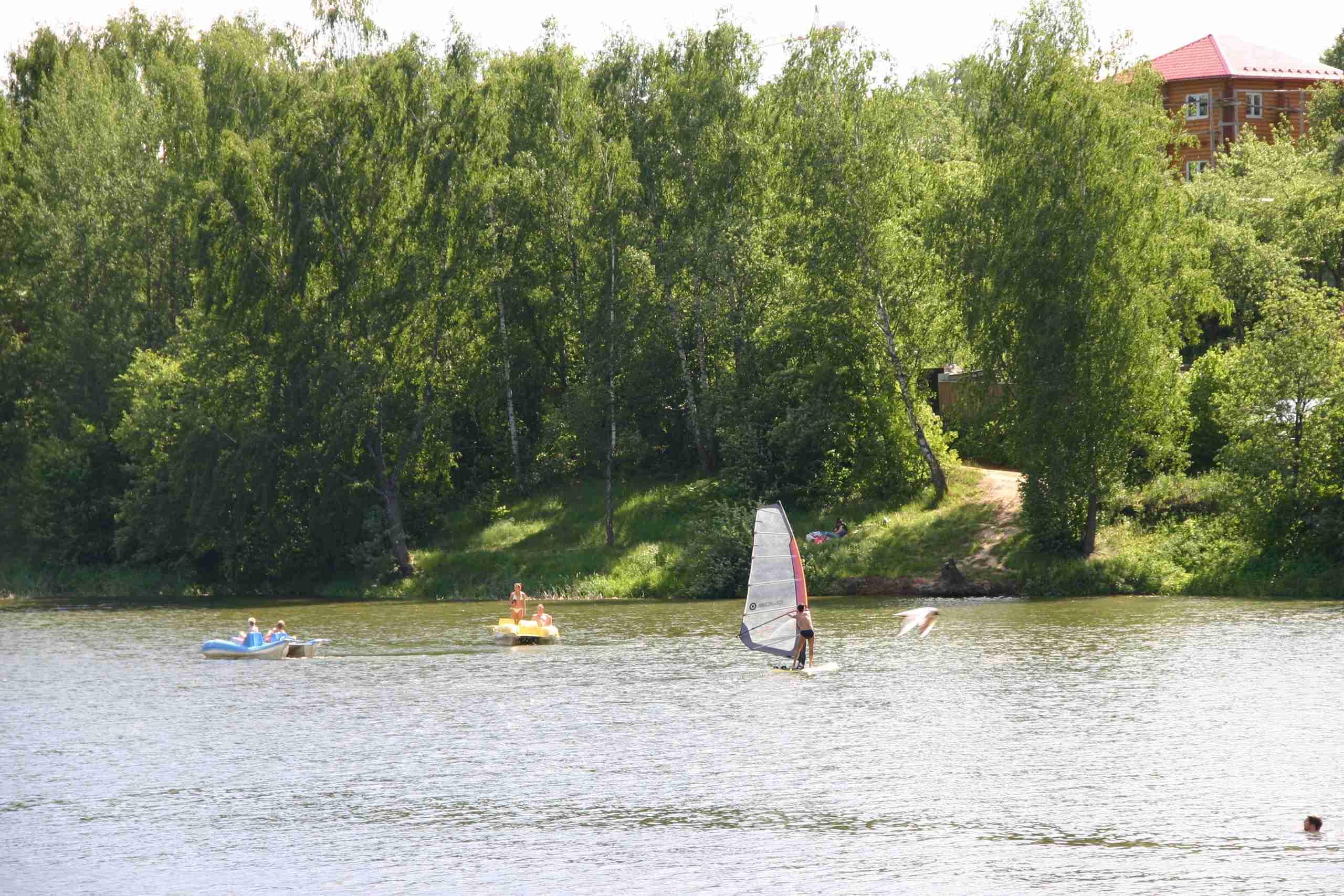 Река Синичка в Московской области