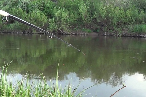 Рыбалка, река Обва