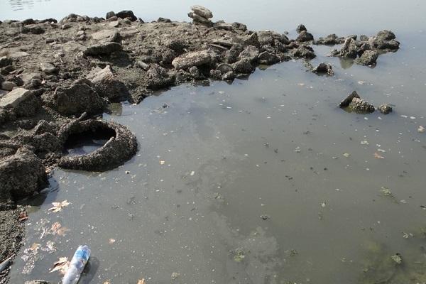 Загрязнение реки Кубань
