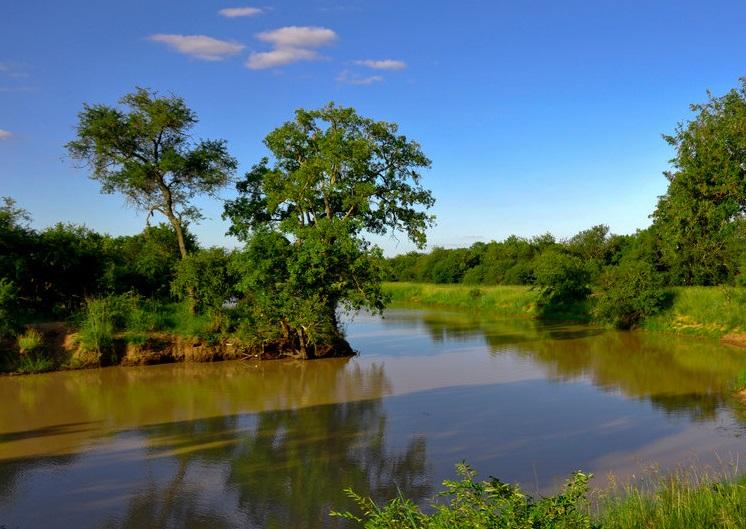 Река Лимпопо протекающая в Африке.