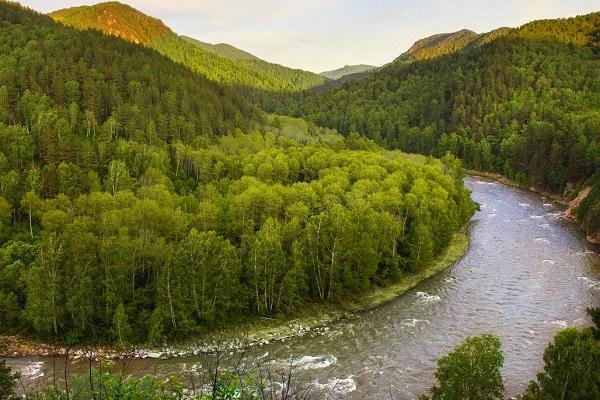 река Песчаная в Алтайском крае