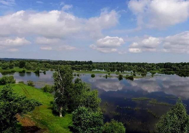 Река Сок в Самарской области