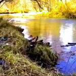 Речка Нарва в Хасанском районе