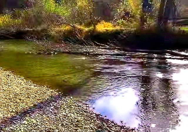 Нарва река