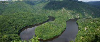 Амазонка самая полноводная река в мире